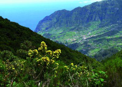 Madeiras Landschaft