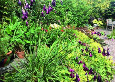 Templebreedy Garden